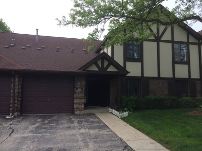 Wheeling Condo/Townhouse New: 1074 Creekside Court #2A