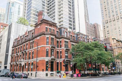Chicago Rental New: 42 East Chicago Avenue #3E