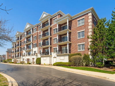 Clarendon Hills Condo/Townhouse New: 412 McDaniels Circle #205
