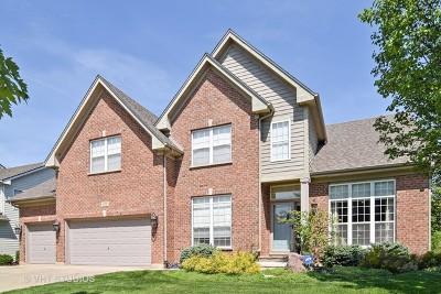 Streamwood Single Family Home For Sale: 411 Elderberry Lane