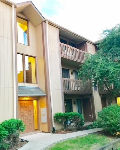 Naperville Condo/Townhouse New: 107 Olesen Drive #3E