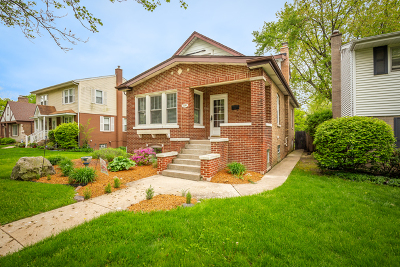 Elmhurst Single Family Home New: 370 North Oaklawn Avenue