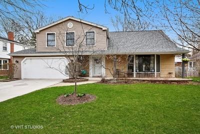 Naperville Single Family Home New: 1556 Shenandoah Lane