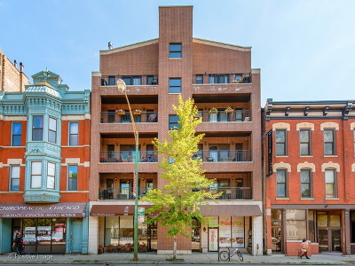 Chicago Condo/Townhouse New: 409 West North Avenue #2W