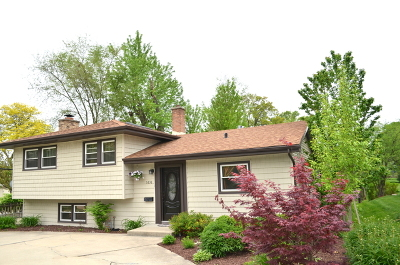 Downers Grove Single Family Home New