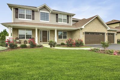 Minooka, Channahon Single Family Home For Sale: 1497 South Saddlebrook Lane