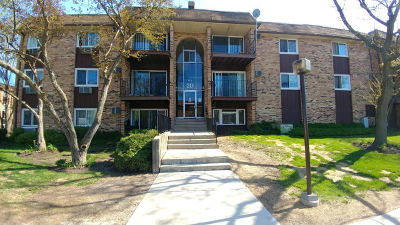 Hoffman Estates Condo/Townhouse New: 715 Hill Drive #2-101