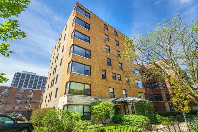 Chicago IL Condo/Townhouse New: $359,000
