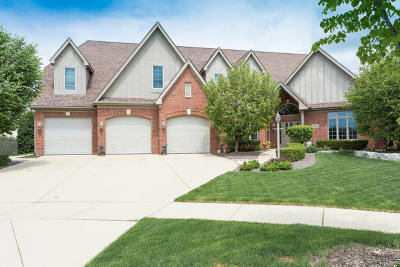 Orland Park Single Family Home New: 10834 Moose Lane