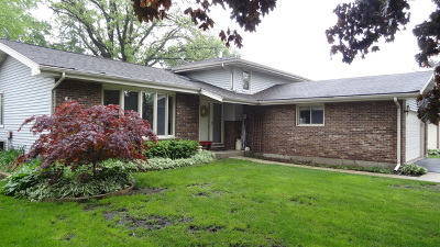 West Chicago Single Family Home For Sale: 407 South Coolidge Avenue