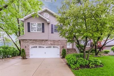 Hoffman Estates Single Family Home New: 1245 West Dexter Lane