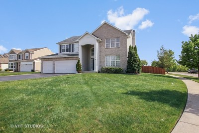 Joliet Single Family Home For Sale: 3400 Forest View Drive