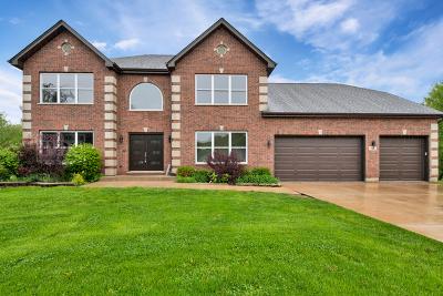 Elgin IL Single Family Home New: $500,000