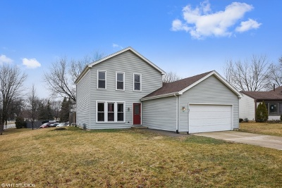Schaumburg Single Family Home For Sale: 921 Brendon Drive