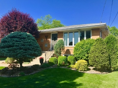 Bridgeview Single Family Home For Sale: 7642 South Octavia Avenue