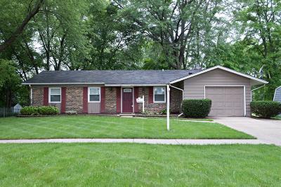 Palatine Single Family Home New: 354 North Wilke Road