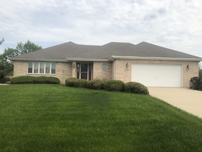 Homer Glen Single Family Home New