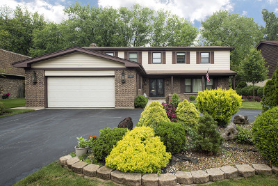Wilmette Single Family Home For Sale: 3436 Riverside Drive
