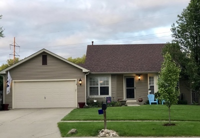 McHenry Single Family Home New: 112 South Glenbrook Trail