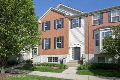 Elgin Condo/Townhouse New: 246 Comstock Drive #246