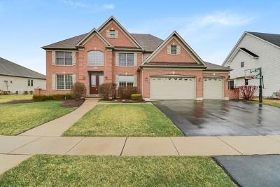St. Charles Single Family Home New: 40w782 Fox Creek Drive