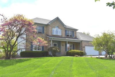 Elgin Single Family Home New: 40w595 Prairie Crossing