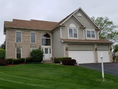 Hoffman Estates Single Family Home New: 5269 Elliott Drive