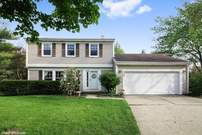 Buffalo Grove Single Family Home New: 908 Thompson Boulevard