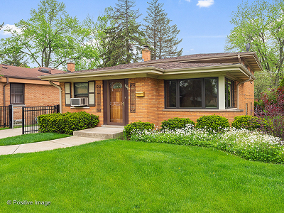 Elmhurst Single Family Home New: 964 South Stratford Avenue
