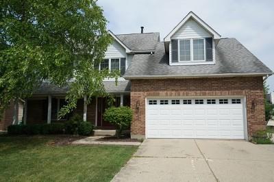 Hoffman Estates Single Family Home New: 4925 Tarrington Drive