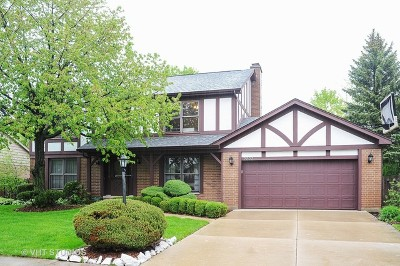 Glenview Single Family Home New: 2223 Janet Drive