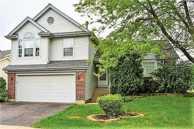 Lake Zurich Single Family Home New: 1278 Lexington Lane East