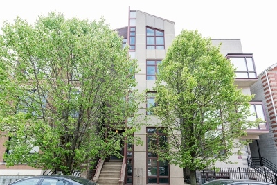 Chicago Condo/Townhouse New: 2017 West Superior Street #101