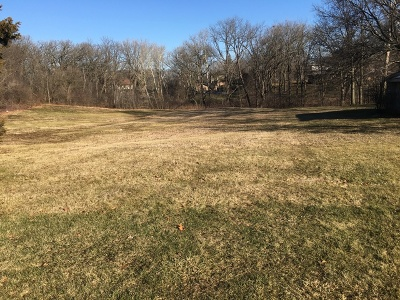 Palos Park Residential Lots & Land For Sale: 8620 West 131st Street