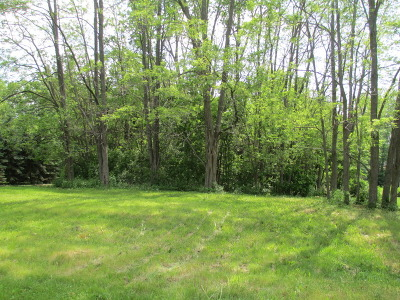 Gilberts Residential Lots & Land For Sale: Lot 71 Pierce Street