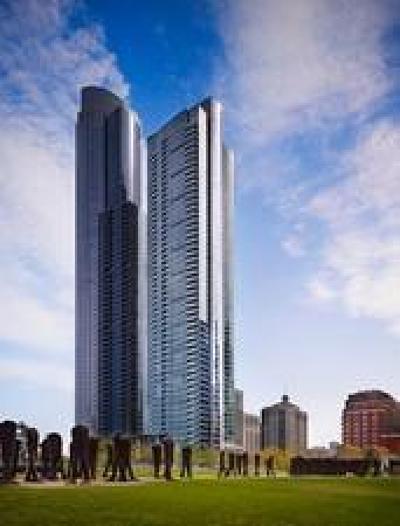 Chicago Condo/Townhouse New: 1201 South Prairie Avenue #1306