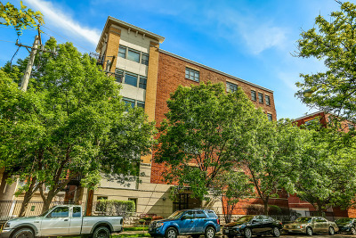 Chicago Condo/Townhouse New: 2330 West St Paul Avenue #204