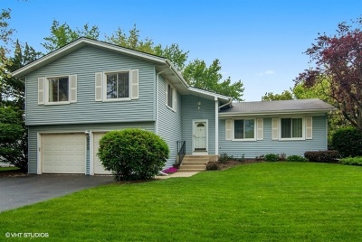 Naperville Single Family Home For Sale: 235 Warwick Drive