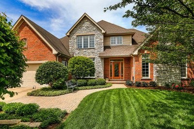 Naperville Single Family Home New: 344 Avena Circle