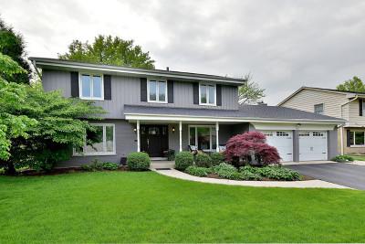 Elmhurst Single Family Home New: 794 South Stuart Avenue