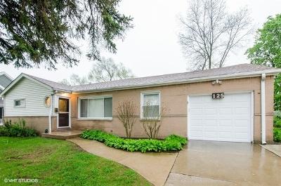 Hoffman Estates Single Family Home New: 125 Bradley Lane