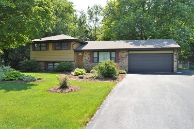 Single Family Home New: 5s354 Tuthill Road