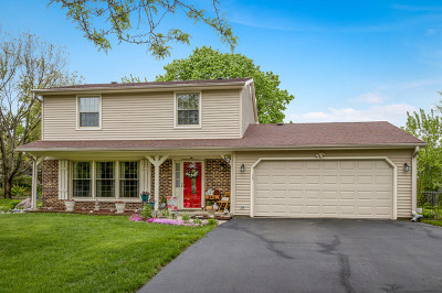 Lake Zurich Single Family Home New: 704 Fieldstone Circle