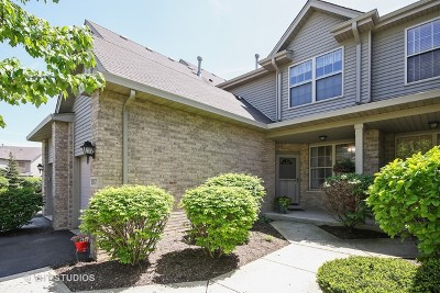 Tinley Park Condo/Townhouse New: 9017 Mansfield Drive