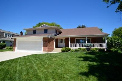 Palatine Single Family Home New: 761 South Middleton Avenue