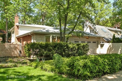 Chicago Single Family Home New: 6922 North Lehigh Avenue
