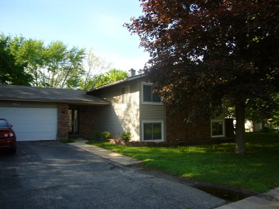 Bolingbrook Single Family Home Contingent: 412 Nassau Avenue