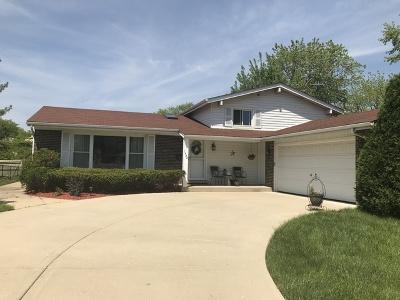 Palatine Single Family Home New: 1538 East Lake Louise Drive