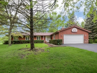 Wauconda Single Family Home For Sale: 27204 North Williams Park Road