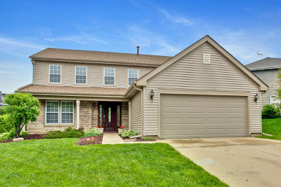 Palatine Single Family Home New: 1208 North Sherwood Lane